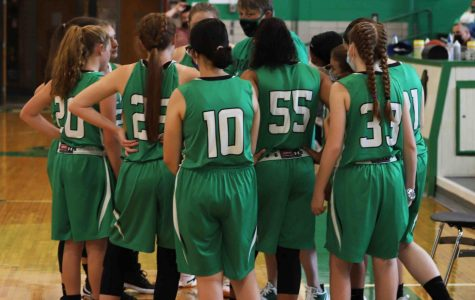 Harlan coach Amanda Vance talked with her team during a break in the action of Saturday's game against Pineville. The Lady Dragons improved to 4-1 with a pair of wins over Lynn Camp earlier this week.