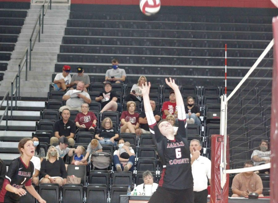 Harlan+County+eighth-grader+Kalista+Dunn+set+the+ball+for+a+teammate+in+action+Saturday+against+Pineville.+The+Lady+Bears+won+in+three+sets.