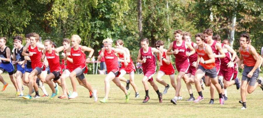 Runners left the starting line on Saturday at the Black Bears Invitational.
